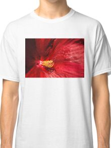 Shades of Red Classic T-Shirt