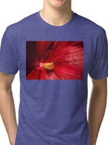 Shades of Red Tri-blend T-Shirt
