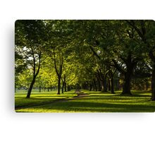 Sunny August Afternoon in the Park Canvas Print