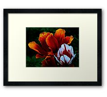Mature ! Framed Print