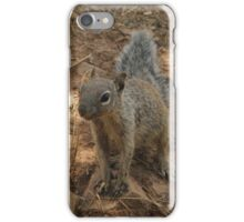 Hillbilly Squirrel iPhone Case/Skin