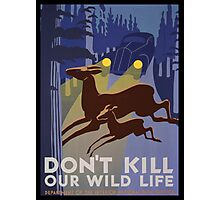 Don't Kill Our Wildlife Photographic Print