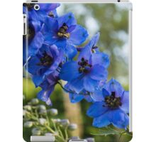 Sapphire Blues and Pale Greens - a Showy Delphinium iPad Case/Skin