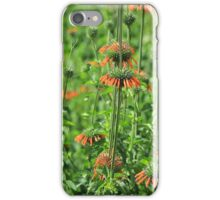 Wild Cone Flowers iPhone Case/Skin