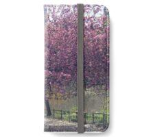 The Pond at Central Park. iPhone Wallet/Case/Skin