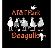 AT&T Park Seagulls  Photographic Print