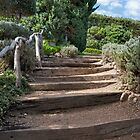 Ties Into Steps by phil decocco