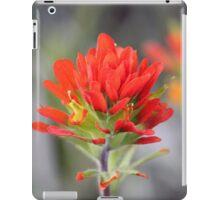 Indian Paintbrush - Wild Flower iPad Case/Skin