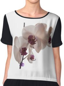 Photograph of an Orchid Chiffon Top