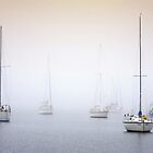 Misty Bay - Corio Bay by Hans Kawitzki