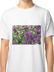 Beautiful purple flowers in the garden. Natural background. Classic T-Shirt