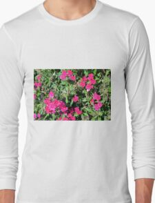 Beautiful pink flowers in the garden. Natural background. Long Sleeve T-Shirt