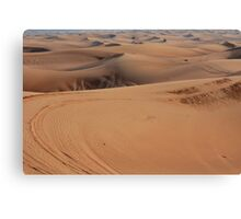 Sand dunes in the desert. Canvas Print