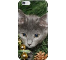 Cute kitten climbed the tree  iPhone Case/Skin