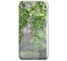 views of nature, forest in the summer iPhone Case/Skin