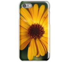 Orange flower on a green background  iPhone Case/Skin