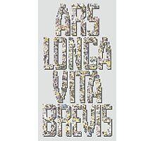 Art is long, life is short. Photographic Print