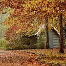 Autumn Wonderland by yolanda