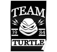 Team Turtle Poster