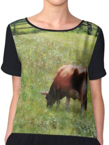 Cow Grazing in Pasture Chiffon Top