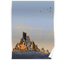 Desert Landscape 05 Poster