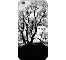 Stand Strong iPhone Case/Skin