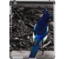Mr Magpie iPad Case/Skin