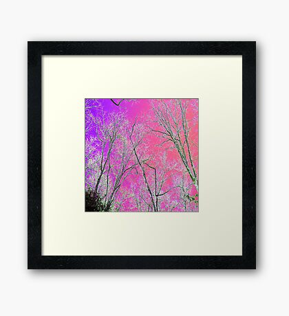 Solorized Sunset Framed Print