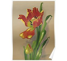 Motley tulip - acrylic painting Poster