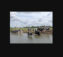 Cows Cooling off in the River Thames Unisex T-Shirt