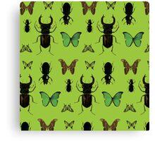 Green bugs Canvas Print