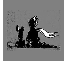 The LITTLE PRINCE and the FOX - stencil grey version Photographic Print
