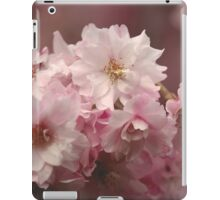 Neighborhood Pink Cherry Blossoms iPad Case/Skin