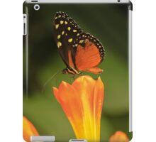 Butterfly #1 iPad Case/Skin