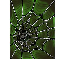 Deep Green Web Photographic Print