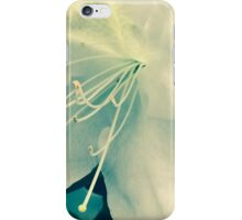 Azalea I Atlanta, GA. iPhone Case/Skin