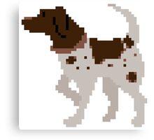 Pixel Pointer Canvas Print
