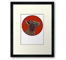 English Bull Terrier Dog Framed Print
