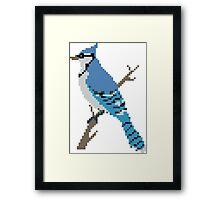 Pixel Blue Jay Framed Print