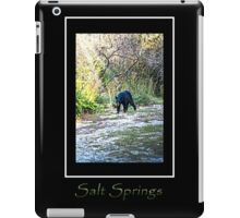 Salt Springs Bear iPad Case/Skin
