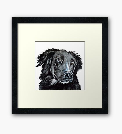 Lonesome Dog Framed Print