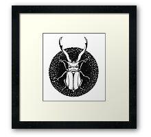 Ink Beetle Framed Print