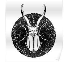 Ink Beetle Poster