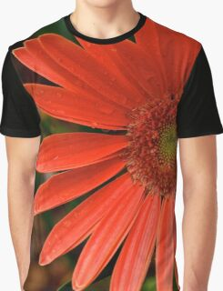 Gerbera Daisy Graphic T-Shirt