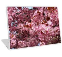 Pink Cherry Blossoms Laptop Skin