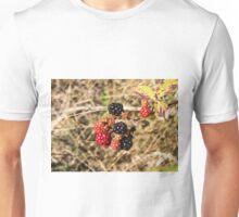 3142016 blackberries Unisex T-Shirt