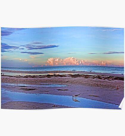 A Coastal Morning Poster
