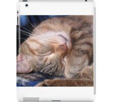 Relaxing sleeping cat iPad Case/Skin