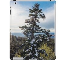 The beauty of spring iPad Case/Skin
