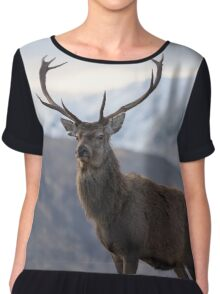 Red Deer Stag in Highland Scotland Chiffon Top